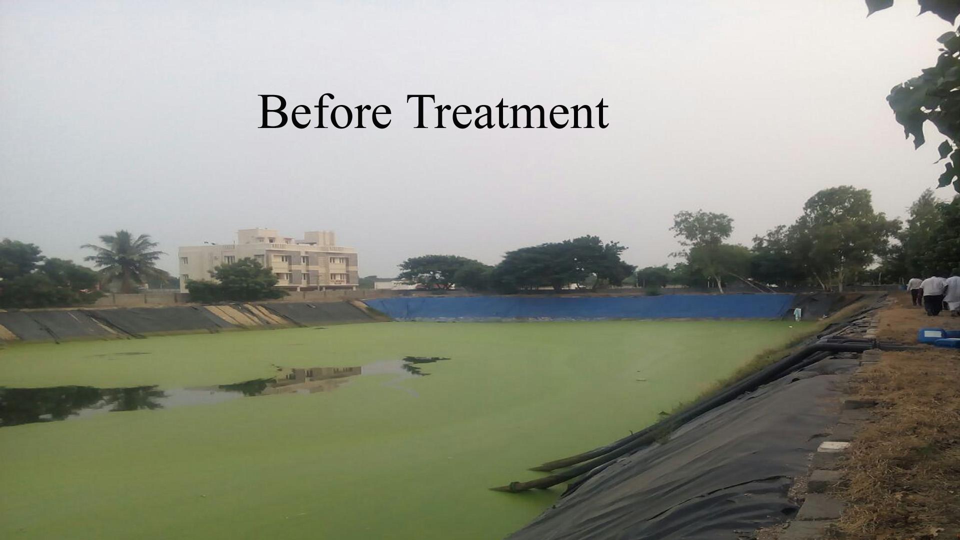 pond treatment